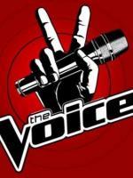 The_Voice___La_plus_belle_voix_150